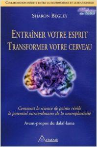 entrainement-cerveau-transformation